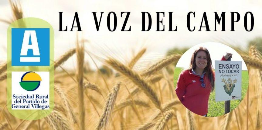 La voz del campo: El uso agronómico de los residuos del feedlot y su impacto positivo para elmedioambiente