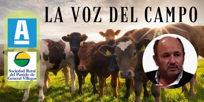 """La Voz del Campo: """"Si el gobierno no se mete a frenar la suba del precio de la leche y las exportaciones, entonces el negocio no debería ser tanmalo"""""""