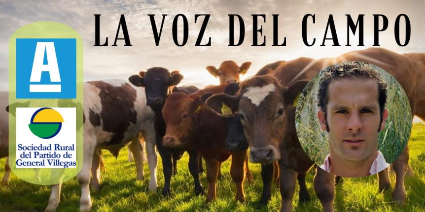 """La Voz del Campo: """"El negocio ganadero sedesplomó"""""""